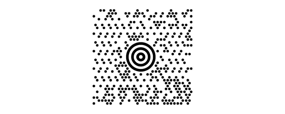 Lire les codes-barres MaxiCode